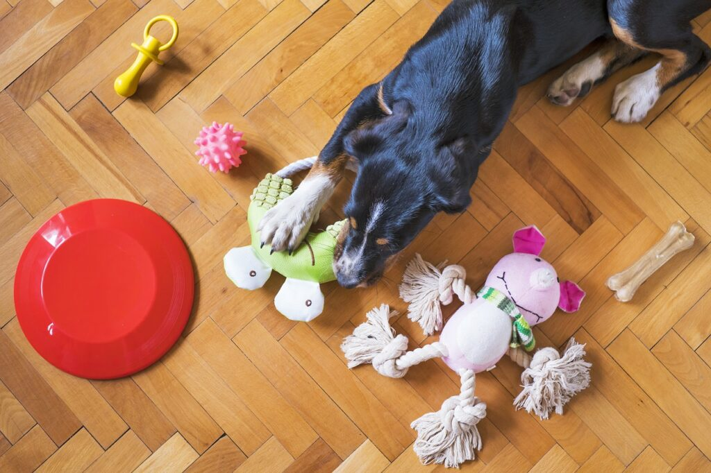 Dog surrounded by toys.