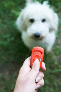 Owner using a clicker.
