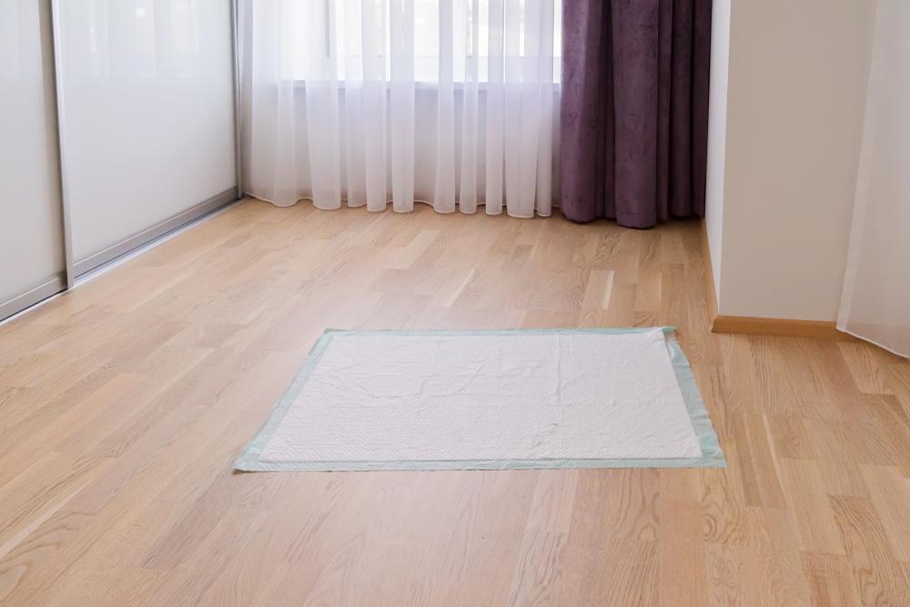 Puppy pad on floor.