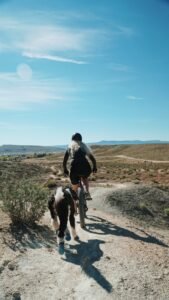 Woman biking with dog.