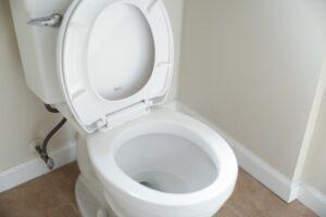 White toilet bowl.