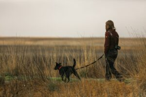 Woman and dog walking in field.